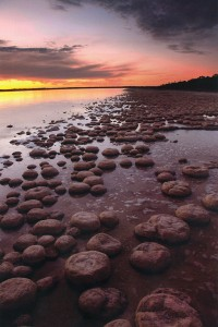 'Oldest Life' - a landscape documenting the thrombolites of Lake Clifton.
