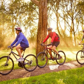 Bicyclists on Melbourne's northern trails.