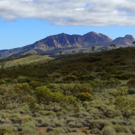 Larapinta Trail trip report by Tim Easton
