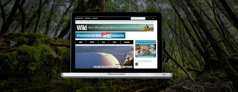 Wild website relaunch