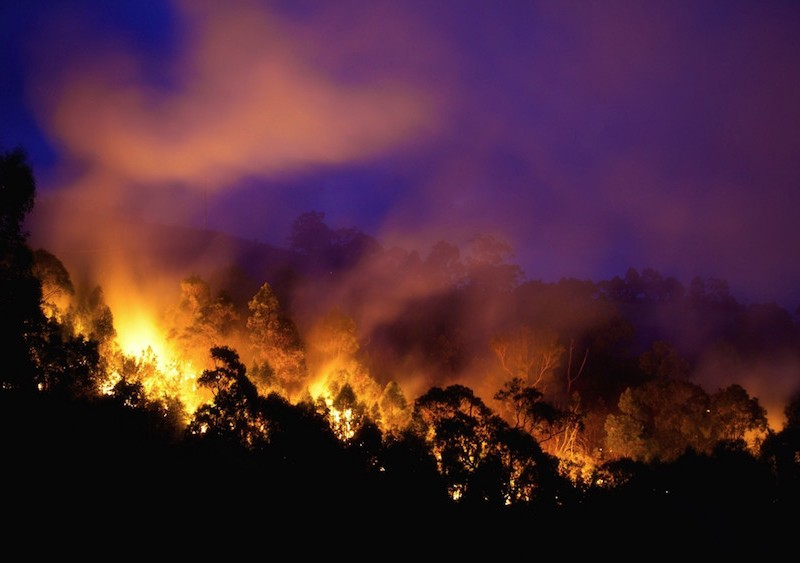 Bushfire night