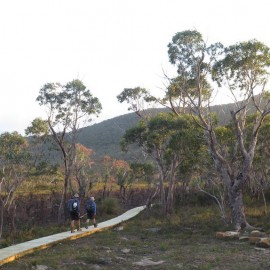 Three Capes Track